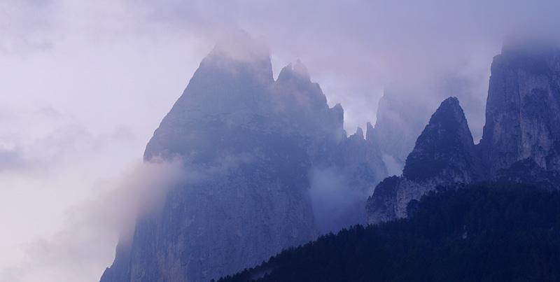 Quelques nigritelles d'Autriche et des Dolomites - Page 2 Panora15