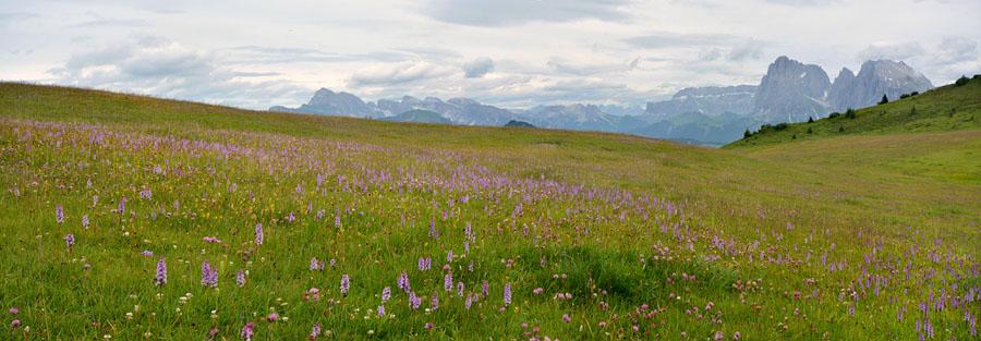 Virée dans les Alpes italiennes, du Piémont aux Dolomites Panora30