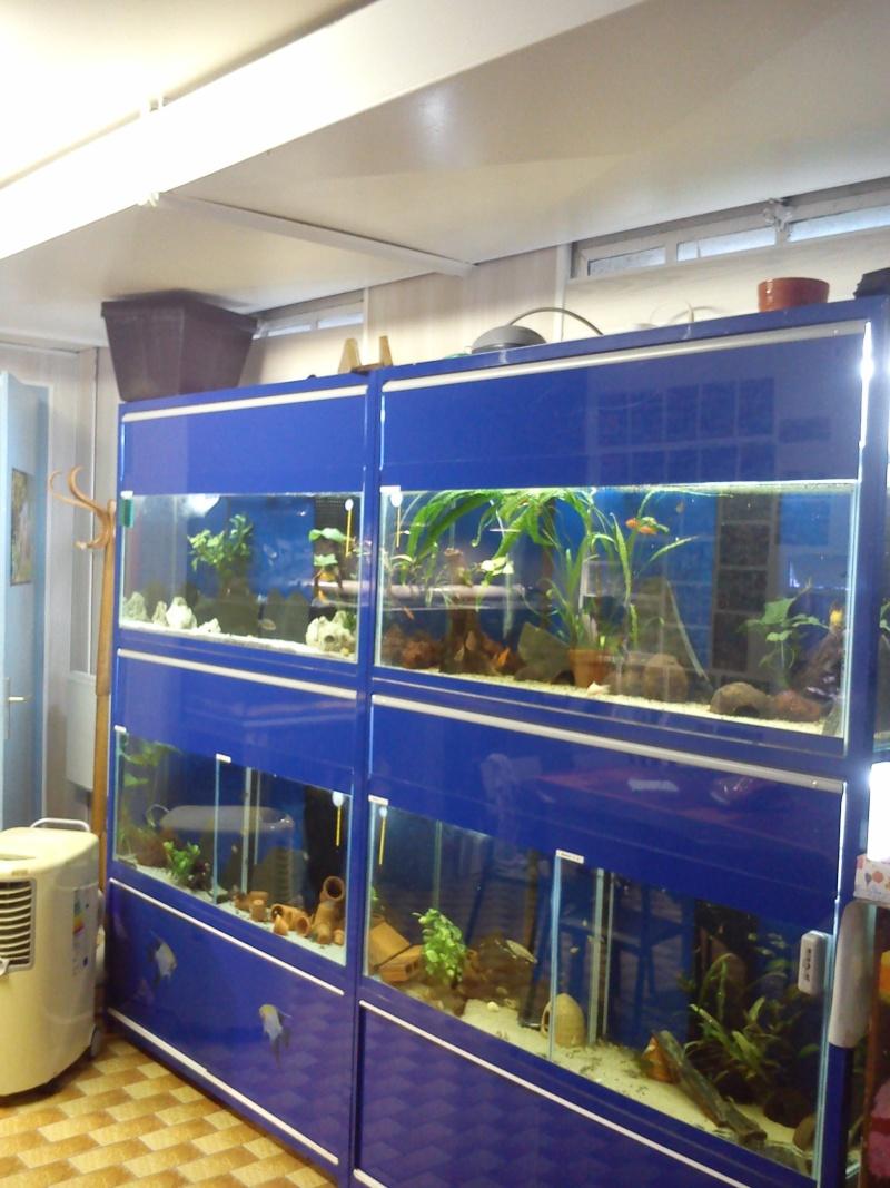 Aqua Club Du Pays des Lacs de LOUPERSHOUSE : Le local Dsc_0211