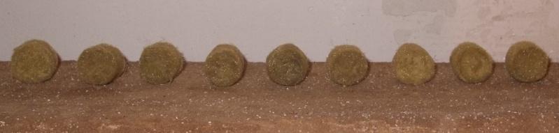 Le Transpyrénéen Oriental en HO. - Page 5 Balles12