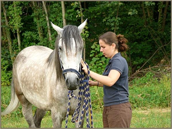 ♣ photos de vous à cheval - Page 2 P1160911