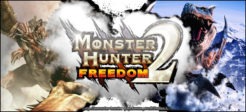 monster_hunter_freedom_team.