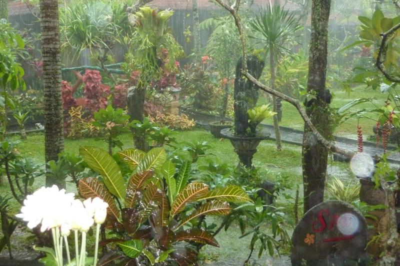 Bali, cuisine et décor - Page 2 P1020914