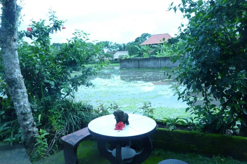 Bali, cuisine et décor - Page 2 P1020915