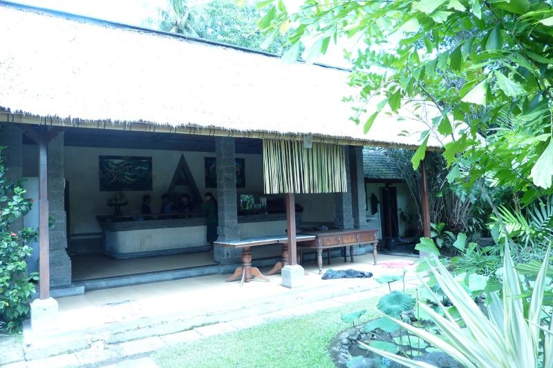 Bali, cuisine et décor P1030114