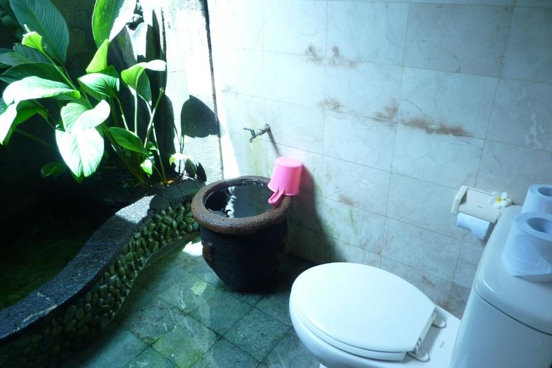 Bali, cuisine et décor P1030210