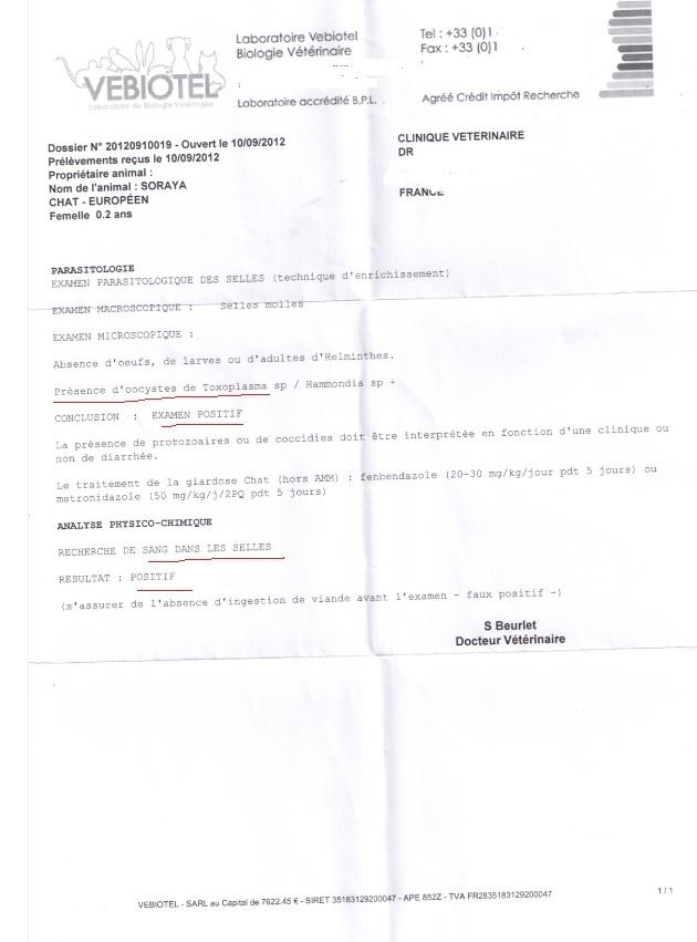 Le(s) combat(s) de Soraya----+600€ de frais help  Rasult10