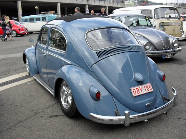 Bug show 2010. Mini-113