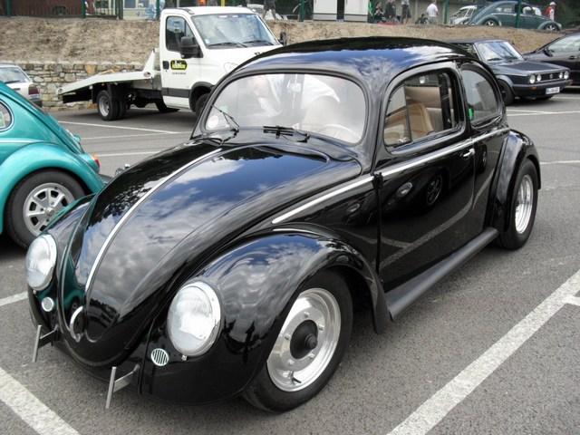 Bug show 2010. Mini-118