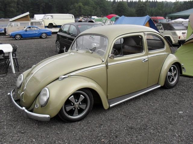 Bug show 2010. Mini-p65