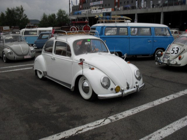 Bug show 2010. Mini-p96
