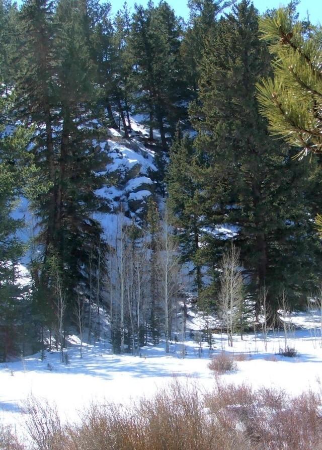 Rockies Dscf5512