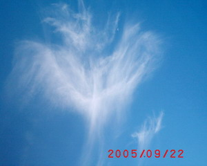 The amazing beauty of Sylphs. Cloud_10