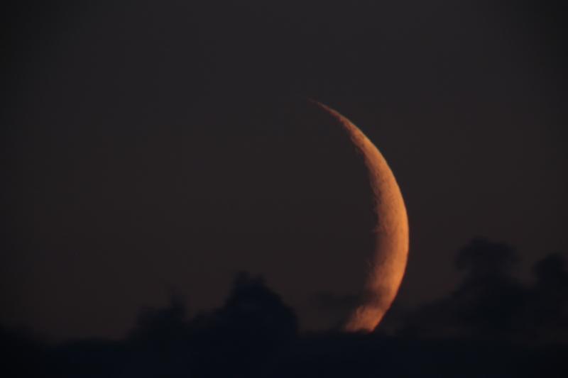 La Lune - Page 5 Img_8119