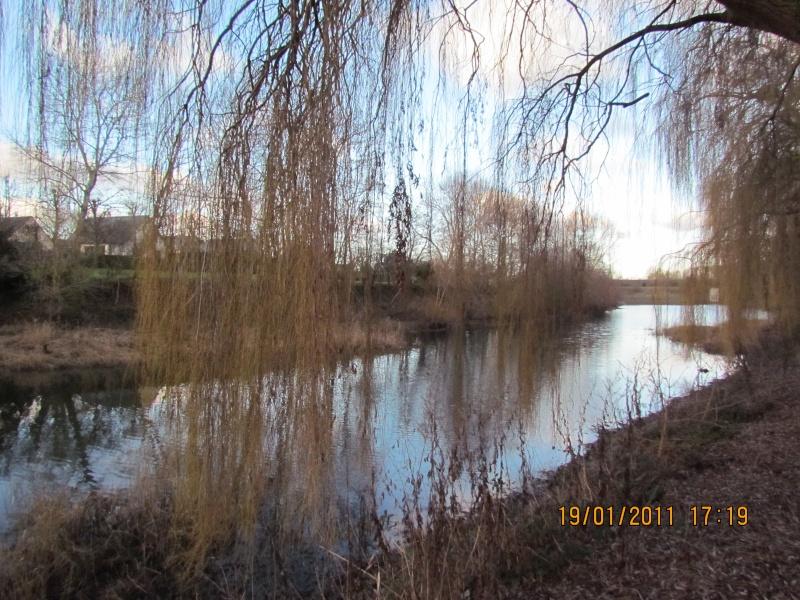ils ont pollué, mon lac.......... - Page 2 18janv16