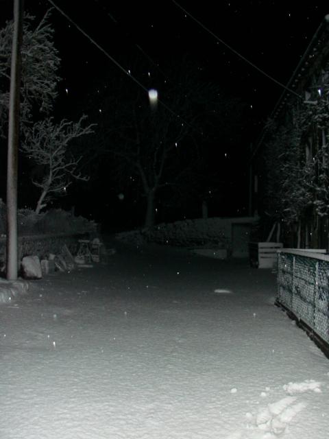 Le temps à Madelonnet du mois de Février 2008 146