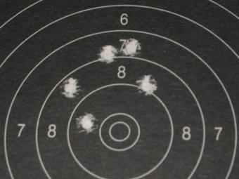 Test Munitions RS1 22 lr (canon flûté) [tableaux + cartons] Cci_bl12