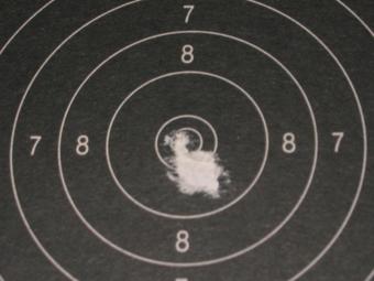 Test Munitions RS1 22 lr (canon flûté) [tableaux + cartons] Eley_c10