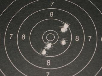 Test Munitions RS1 22 lr (canon flûté) [tableaux + cartons] Rws_ri11