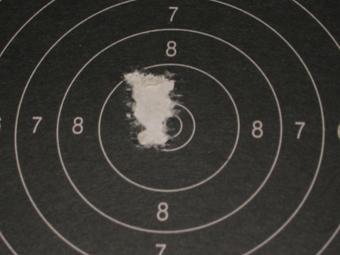 Test Munitions RS1 22 lr (canon flûté) [tableaux + cartons] Rws_ri12