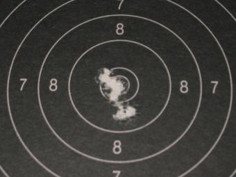 Test Munitions RS1 22 lr (canon flûté) [tableaux + cartons] Sk_pis12