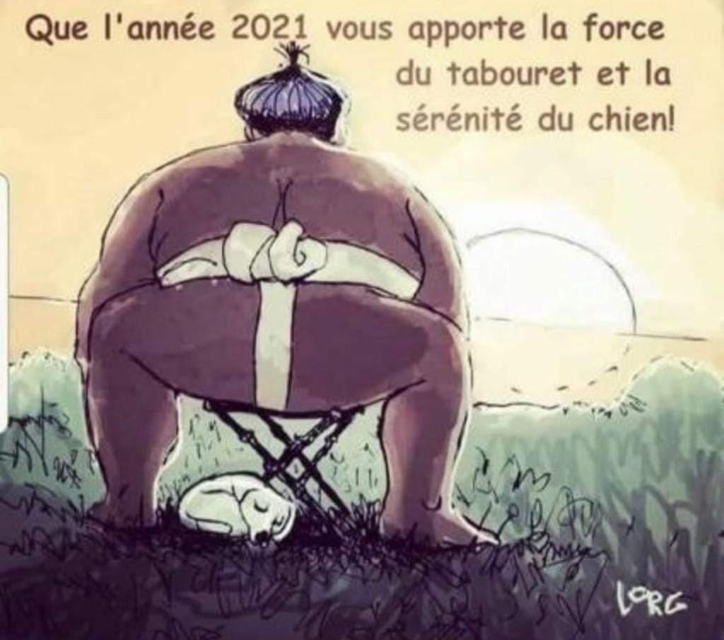 Bonne année 2021 - Page 2 Fb_img10