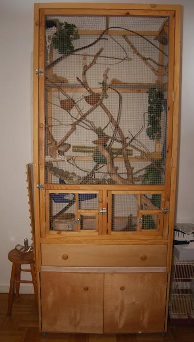 Quelle installation pour les chenilles et papillon Cage_r10