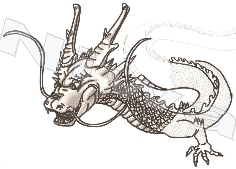 (Niwa) Mes Dessins Dragon10