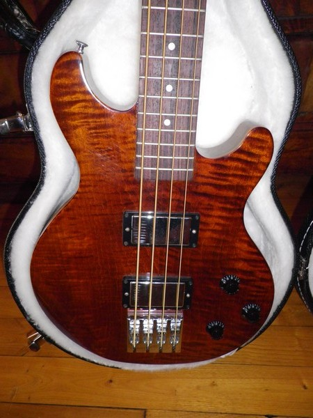 Gibson les paul money bass Imgp0312