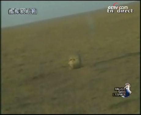 [Shenzhou 7] retour sur Terre - Page 3 Sh7g10
