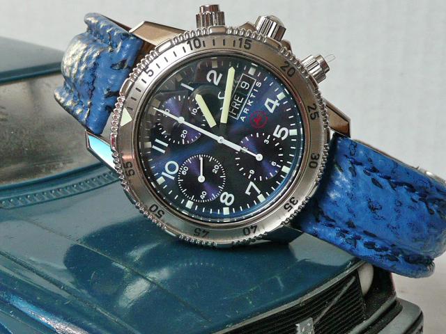 Quelles sont pour vous les plus belles montres de plongée ? - Page 5 P1030410