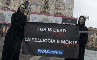 PETA - Rassemblement contre la fourrure à PARIS Fur_dr10
