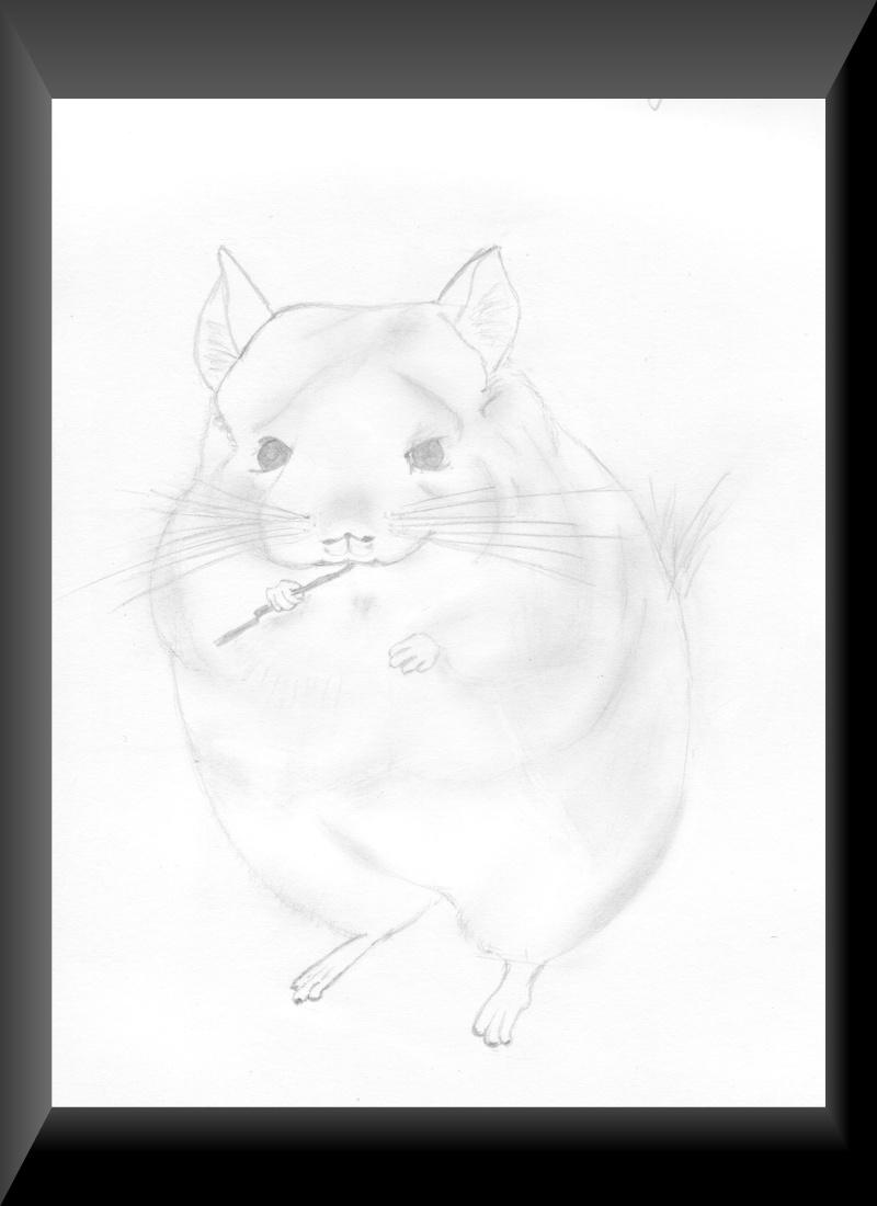 dessins Img_0010