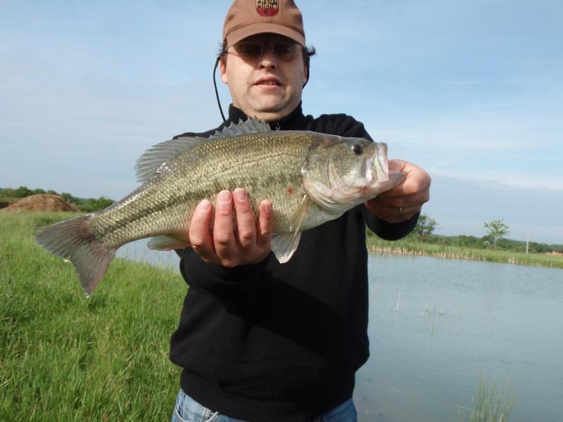 Le Black Bass Bass4510
