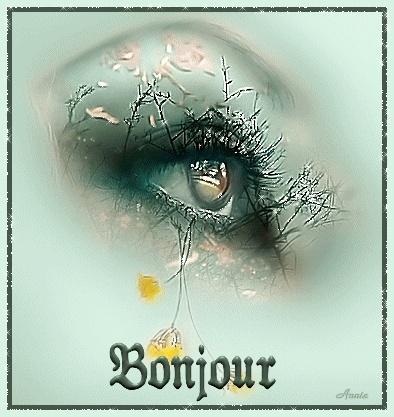 Bonjour et Bonsoir de JANVIER - Page 2 Bj2_bm10