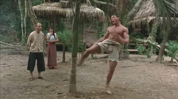 Kickboxer 2213
