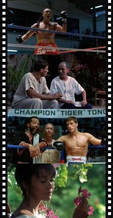 Kickboxer 6613