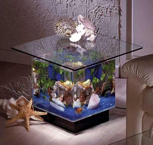 تشكيلات متنوعة من أحواض سمك الزينة 931710