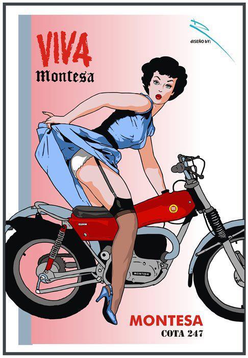 Montesa 247 24679510