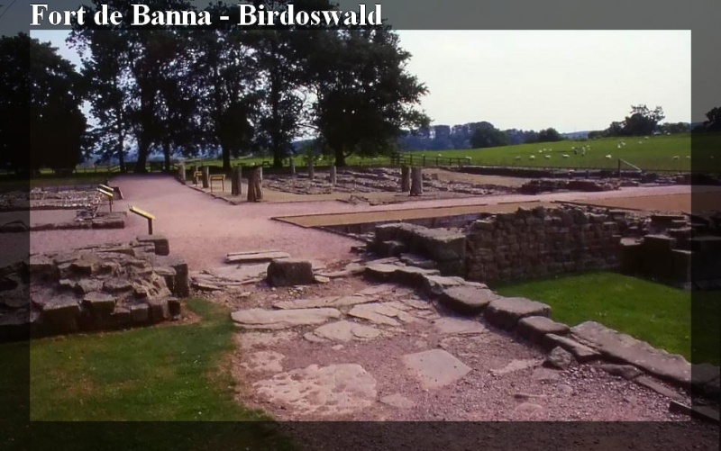 Le Mur d'Hadrien, frontière d'un empire - Page 2 Hadrie17