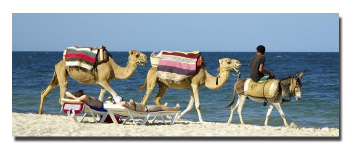 et la caravane passe Tunisi10