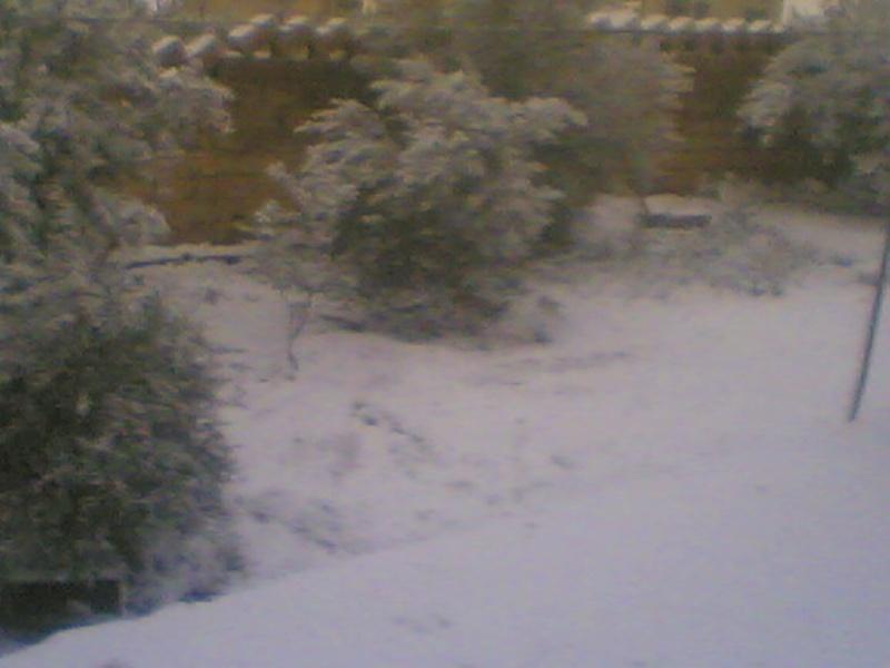 صور الثلج في حيان 31/01/2008 Image010
