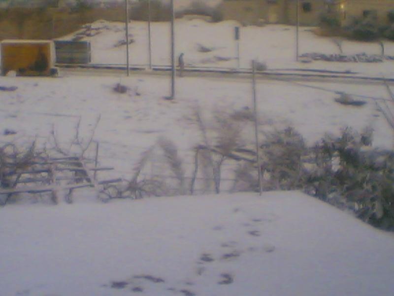 صور الثلج في حيان 31/01/2008 Image012