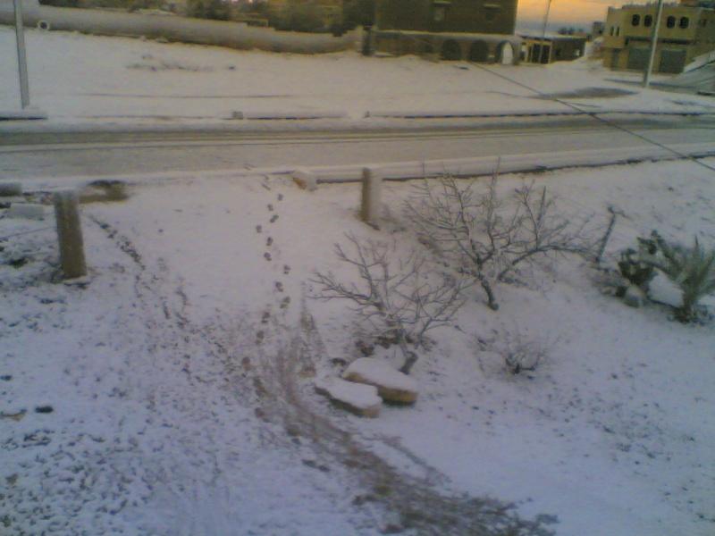 صور الثلج في حيان 31/01/2008 Image013