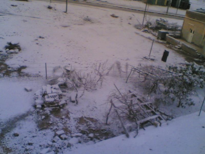 صور الثلج في حيان 31/01/2008 Image016