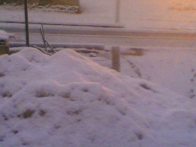 صور الثلج في حيان 31/01/2008 Image019