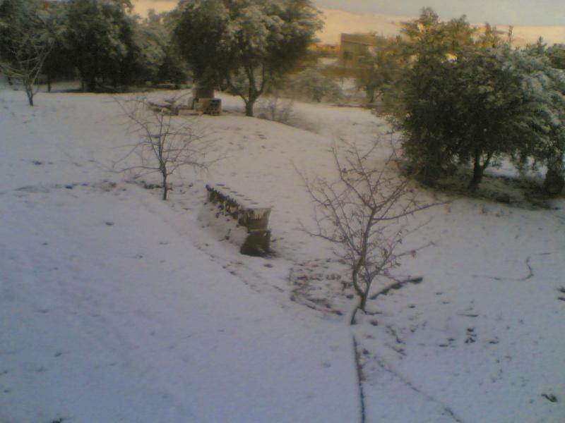 صور الثلج في حيان 31/01/2008 Image022