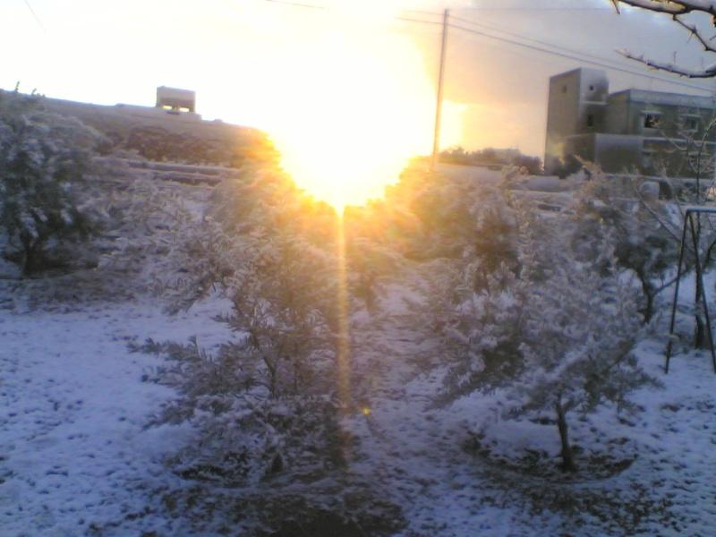 صور الثلج في حيان 31/01/2008 Image023