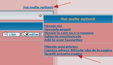 Adaugare motiv pentru editare + versiune pentru tiparire Tipari10