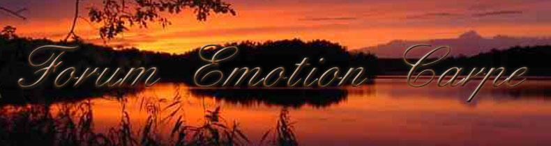 forum émotion carpe